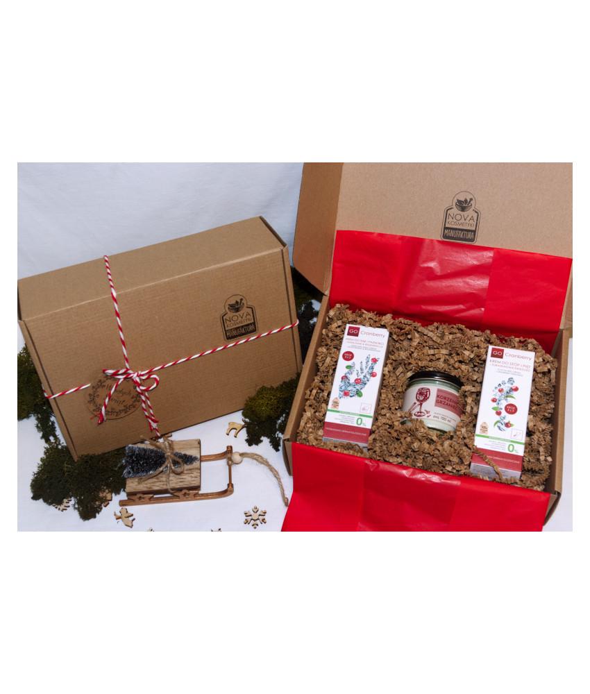 """Detoxifying face cleansing treatment"" - GoSPA Professional set"